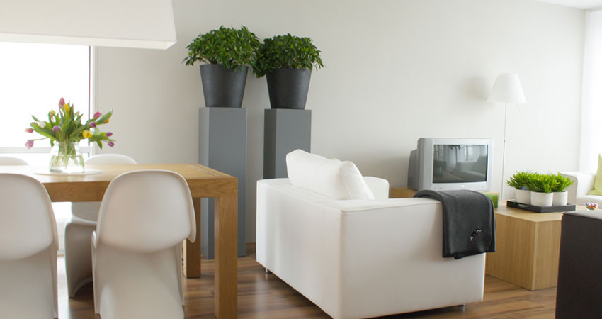 Garden Help - Interior Landscaping